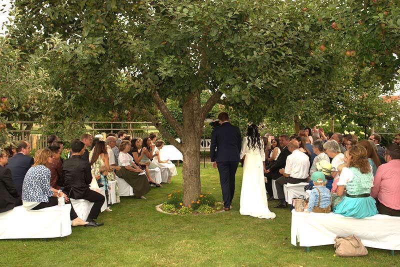 Hochzeit-unterm-Apfelbaum